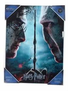 Cuadro de vidrio Harry Potter vs. Voldemort - Harry Potter