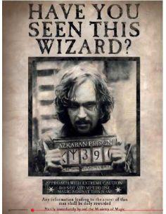 Cuadro de vidrio Sirius Black - Harry Potter