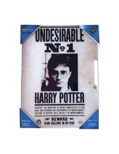 Cuadro de vidrio Indeseable Nº1 - Harry Potter