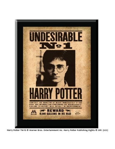 Cuadro Indeseable Nº 1 - Harry Potter