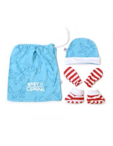 Pack Baby is Coming - Juego de Tronos