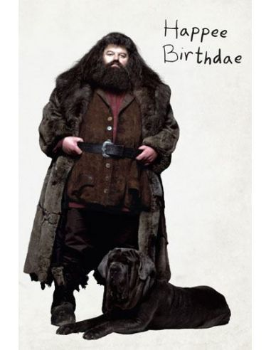 Tarjeta De Felicitación Pop Up 3d Pastel De Hagrid Harry Potter