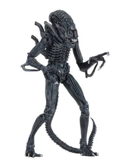 Alien azul Ultimate Aliens Warrior 1986 - Alien