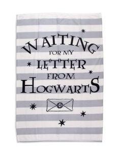 Manta Polar esperando Carta Hogwarts - Harry Potter